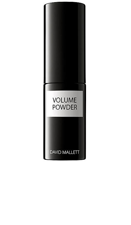 Volume Powder David Mallett $40 BEST SELLER