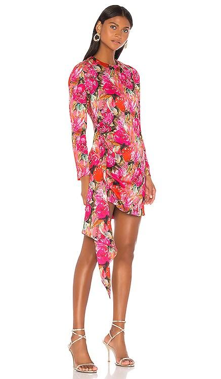 Anik Dress DELFI $211
