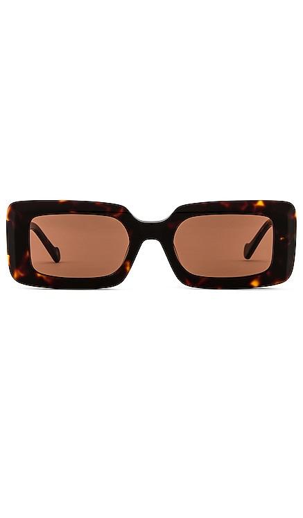 Havana Sunglasses DEVON WINDSOR $99