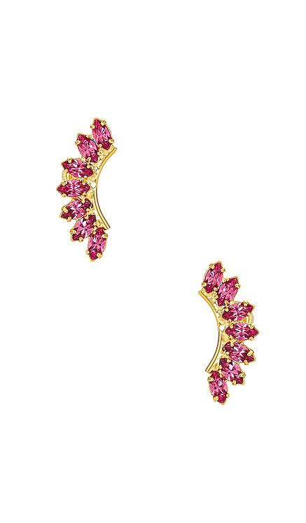 Rhett Earrings Elizabeth Cole $95 NEW