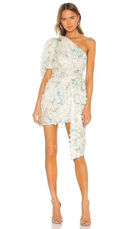 Nala Dress ELLIATT $270 NEW ARRIVAL