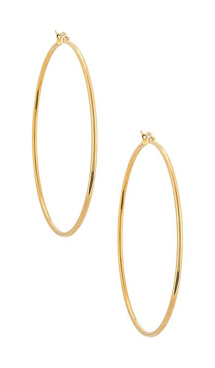 Liv Large Hoop Earring Ellie Vail $49 NEW