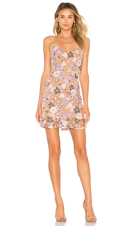 Posy Embroidery Mini Dress For Love & Lemons $234