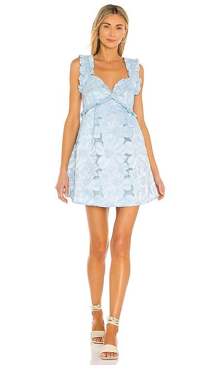 Evelyn Party Dress For Love & Lemons $242