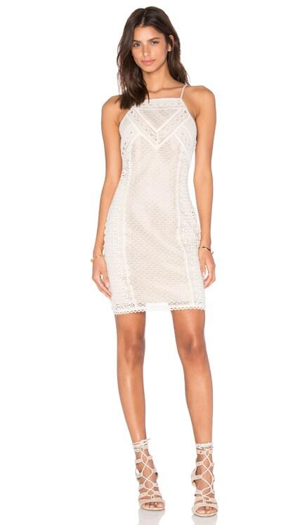 Lua Lace Halter Dress Greylin $45 (FINAL SALE)