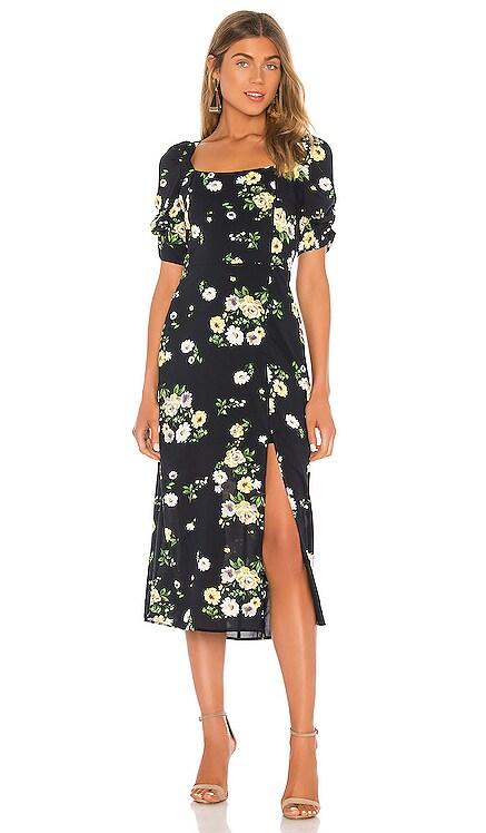 Alice Dress HEARTLOOM $139 NEW ARRIVAL