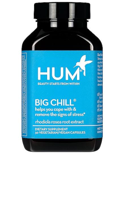 Big Chill Stress Management Supplement HUM Nutrition $20