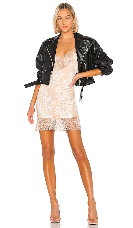 Janisa Embellished Mini Dress h:ours $71 (FINAL SALE)
