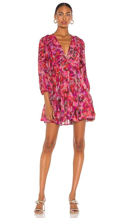 Gaiety Dress IRO $390
