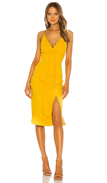 Carlo Dress Jay Godfrey $295 BEST SELLER