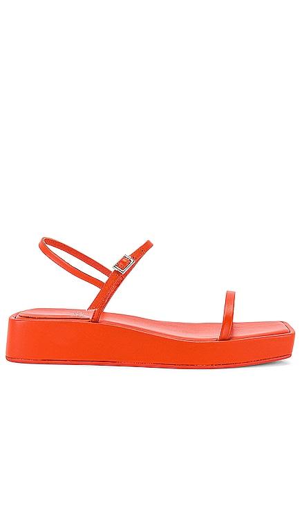 Leontius Flatform Sandal Jeffrey Campbell $115 NEW