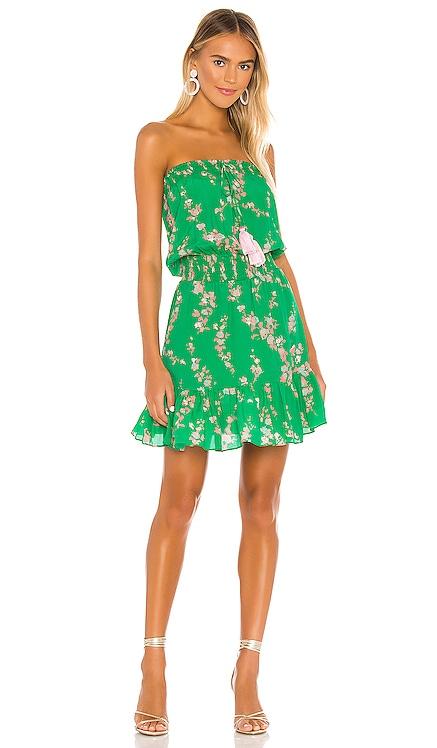 Olie Print Mini Dress Karina Grimaldi $240 NEW