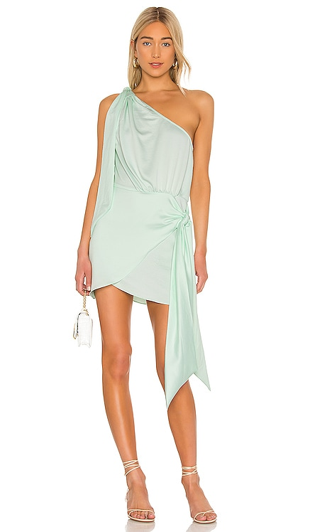The Ambrosine Mini Dress L'Academie $168