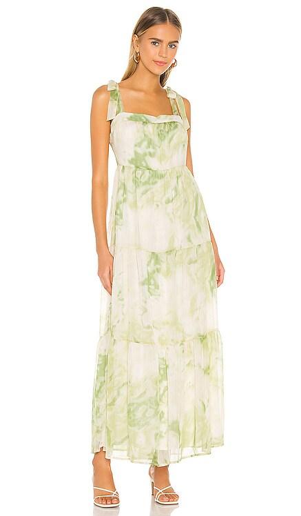Palm Maxi Dress Line & Dot $110 NEW