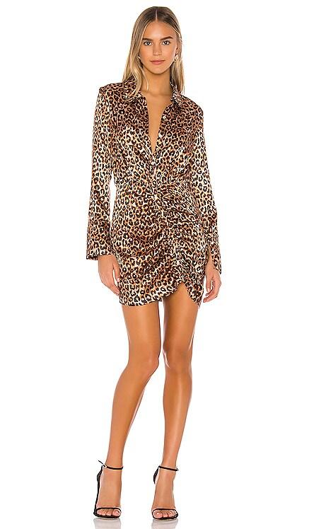 Leopard Emilia Dress LIKELY $42 (FINAL SALE)