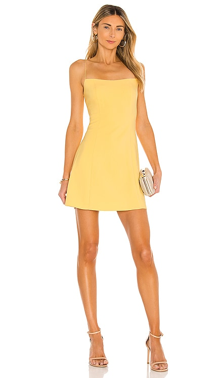Carter Dress LIKELY $178