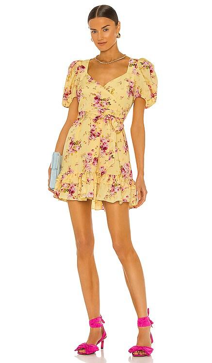Mini Quinn Dress LIKELY $228 NEW