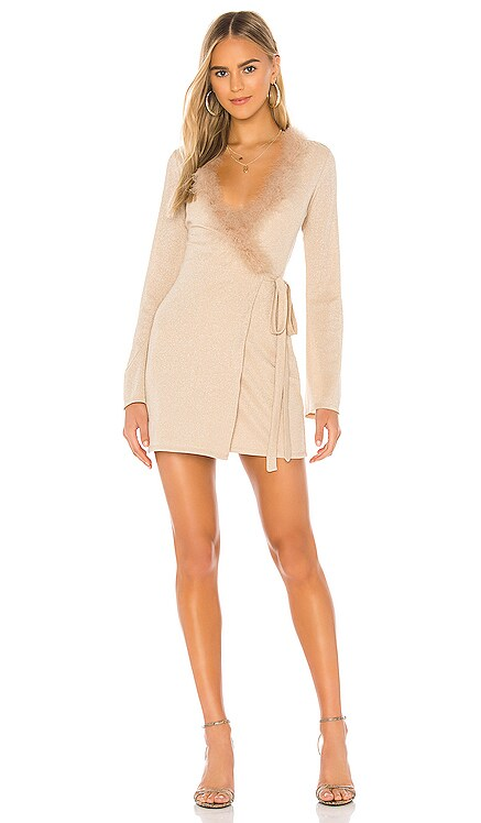 Florence Mini Dress Lovers + Friends $89