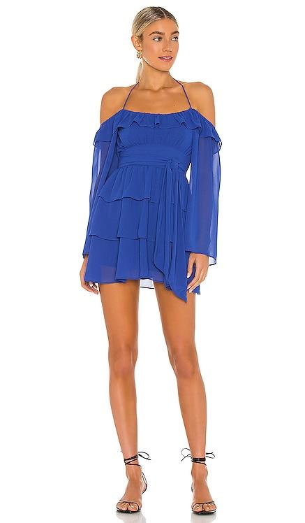 Vittoria Mini Dress Lovers + Friends $225 NEW