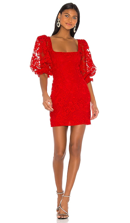 Tonia Dress LPA $235 BEST SELLER
