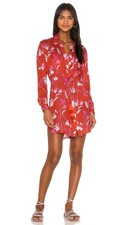 Long Shirt Dress Maaji $86 NEW