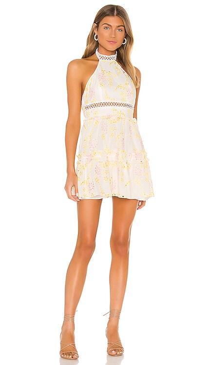 Bryson Mini Dress MAJORELLE $228 NEW ARRIVAL
