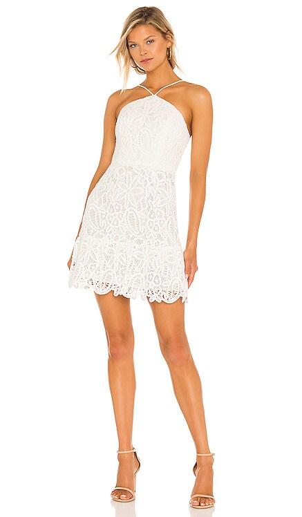 Dylan Crochet Mini Dress MILLY $395 BEST SELLER