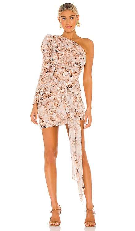 Jaylene Dress Misha Collection $260