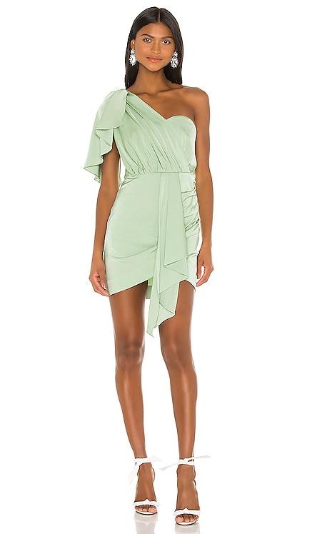 Veroni Mini Dress NBD $228 NEW ARRIVAL