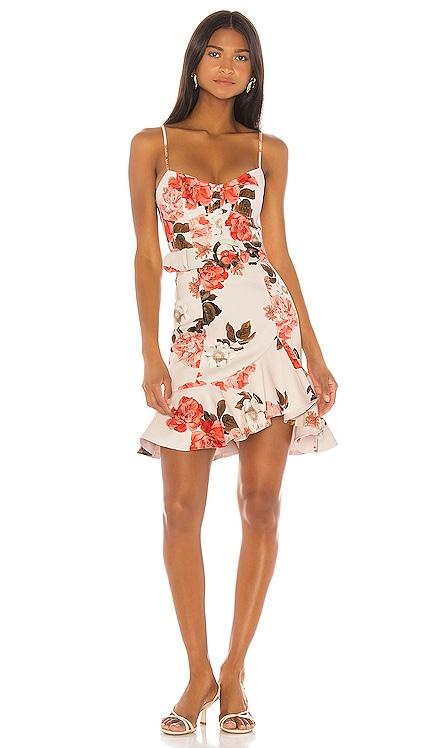 Arielle Floral Frill Dress NICHOLAS $215