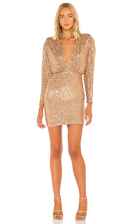 Veda Mini Dress Nookie $349