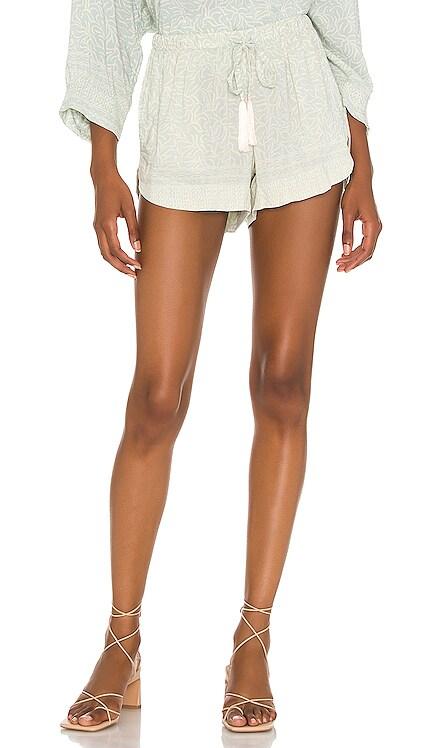 Tash Shorts Natalie Martin $73 NEW