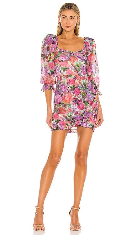 Blossom Mini Dress PatBO $550 Sustainable