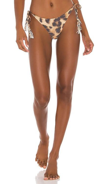 Jungle Bikini Bottom PQ $72 BEST SELLER