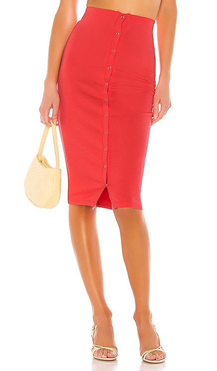 Hopewell Skirt Privacy Please $39