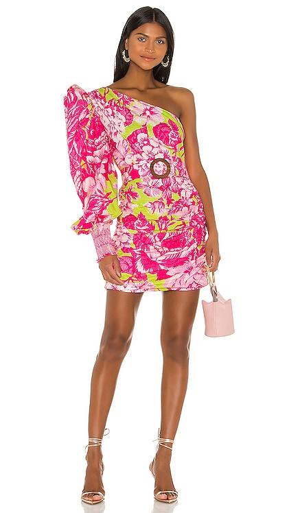 Ziba Dress ROCOCO SAND $339 NEW ARRIVAL