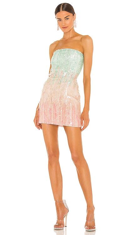 Anastasia Mini Dress retrofete $635 NEW