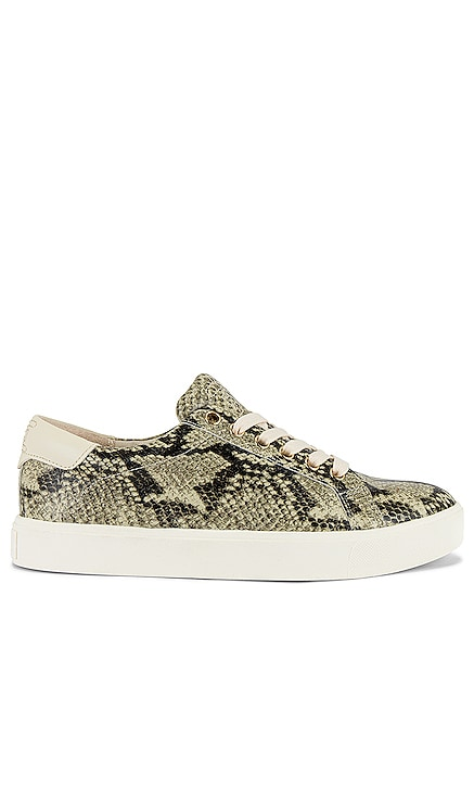 SNEAKERS ETHYL Sam Edelman $100