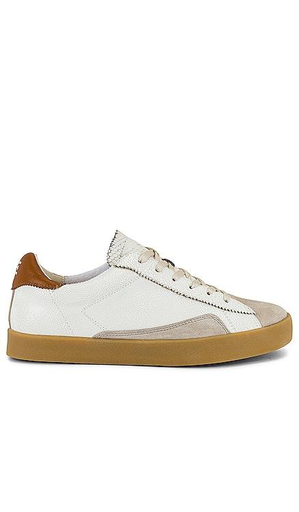Prima Sneaker Sam Edelman $110 BEST SELLER