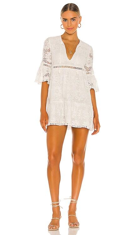 Peridot Shift Dress SAYLOR $286 NEW