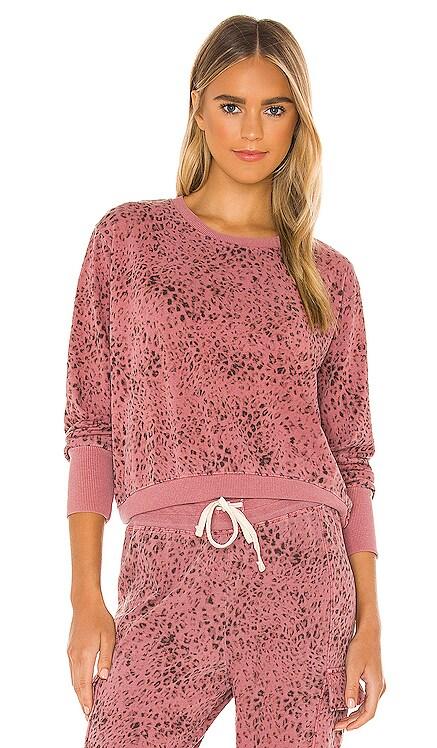 Leopard Sweatshirt SUNDRY $148 NEW