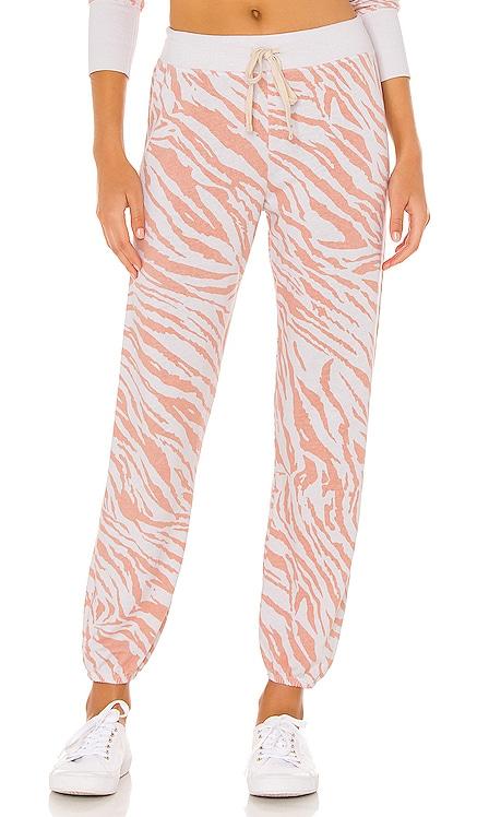 Zebra Sweatpants SUNDRY $128 NEW