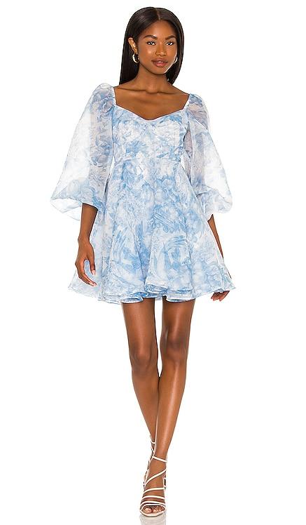 The Princess Dress Selkie $249 NEW