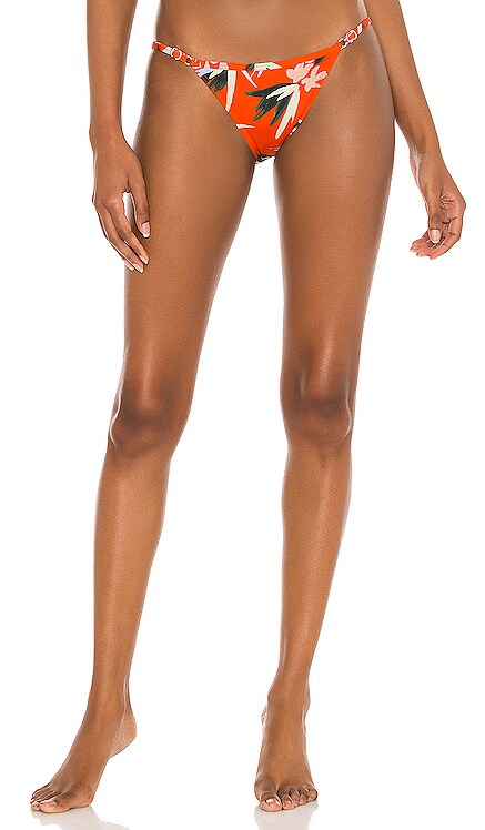 Lulu Bikini Bottom Solid & Striped $84