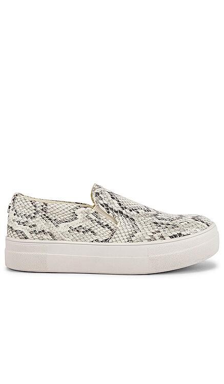 Gills Sneaker Steve Madden $80