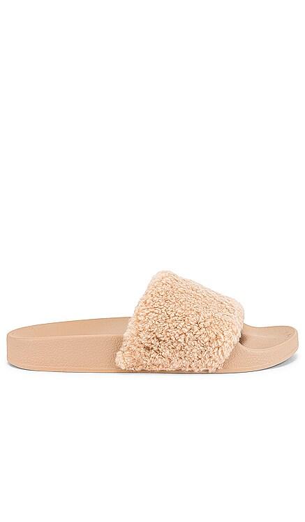 Shear Sandals Steve Madden $40 NEW