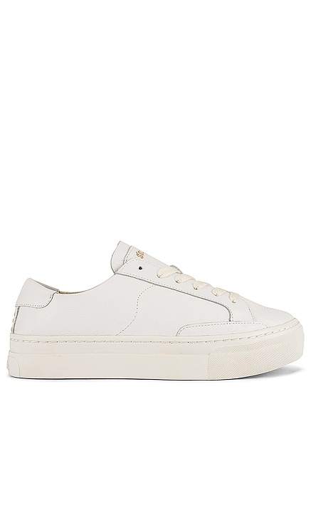 Ibiza Platform Sneaker Soludos $149 BEST SELLER
