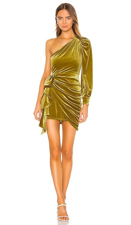 Roberta Mini Dress Song of Style $228