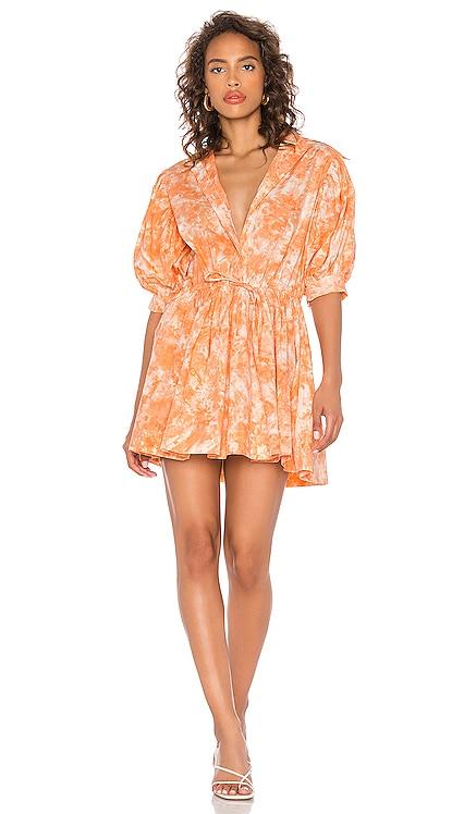 Mini Collar Dress SWF $279 NEW