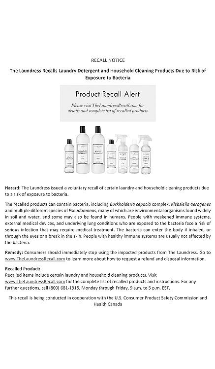 PRODUCTO DE LIMPIEZA SURFACE CLEANER The Laundress $13 MÁS VENDIDO